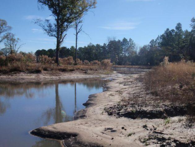 Wetland Impact Analysis, Restoration, and Monitoring