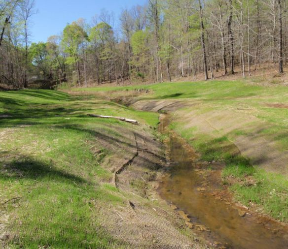Stream Mitigation of Construction Impacts