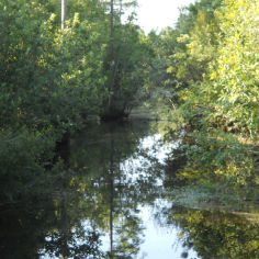 Watershed Protection Plan Implementation